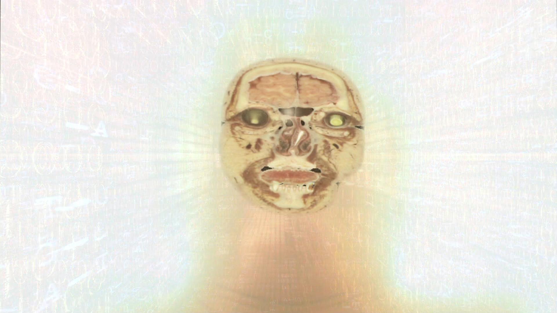 Technocalyps-Transhuman